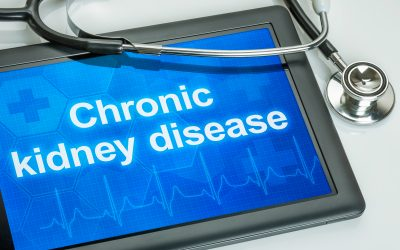 Kidney Disease Basics